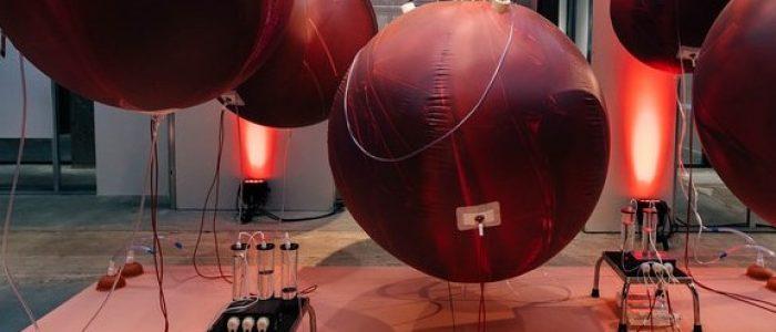 Artificial-Womb-van-Máxima-Medical-Center-ism-TUe-en-Next-Nature-Network-credits-Waag-Society